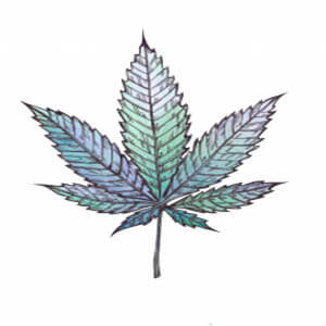 Tipos de cannabis - Blog - Arte - indica